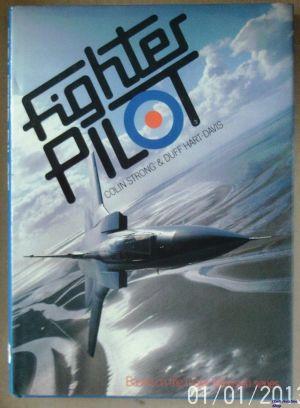 Image not found :Fighter Pilot (Queen Anne)