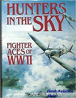 Image not found :Hunters in the Sky, Fighter Aces of WWII