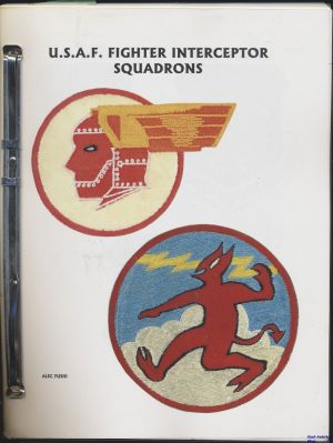Image not found :USAF Fighter Interceptor Squadrons