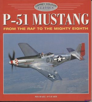Image not found :P-51 Mustang seat (origin not known)