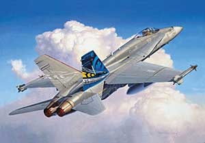Image not found :F/A-18C Hornet 'Anniversary'