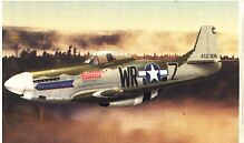 Image not found :(8005) P-51 Mustang 'Hunter Texas', USAAF