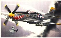 Image not found :(8008) P-51 Mustang 'Korea sharkmouth', USAF