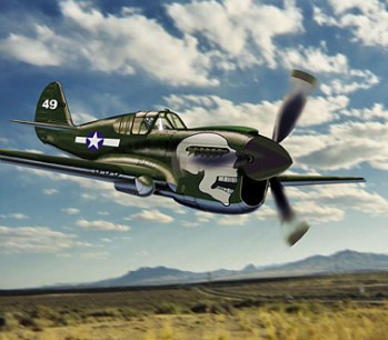 Image not found :P-40N Warhawk 'Joanne', USAAF