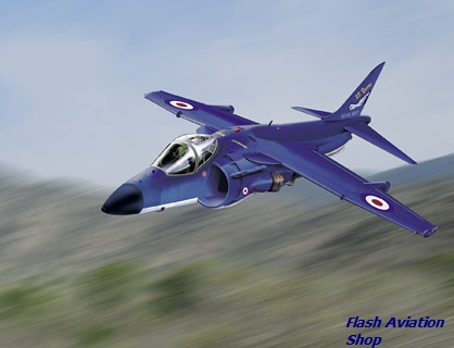 Image not found :Sea Harrier F/A2 25 Year Anniversary Special livery