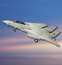 Image not found :F-14 Tomcat 'Black Lions' Last Mission