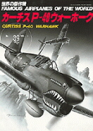 Image not found :P-40 Warhawk