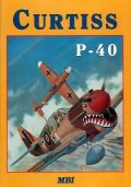 Image not found :Curtiss P-40 (1998)